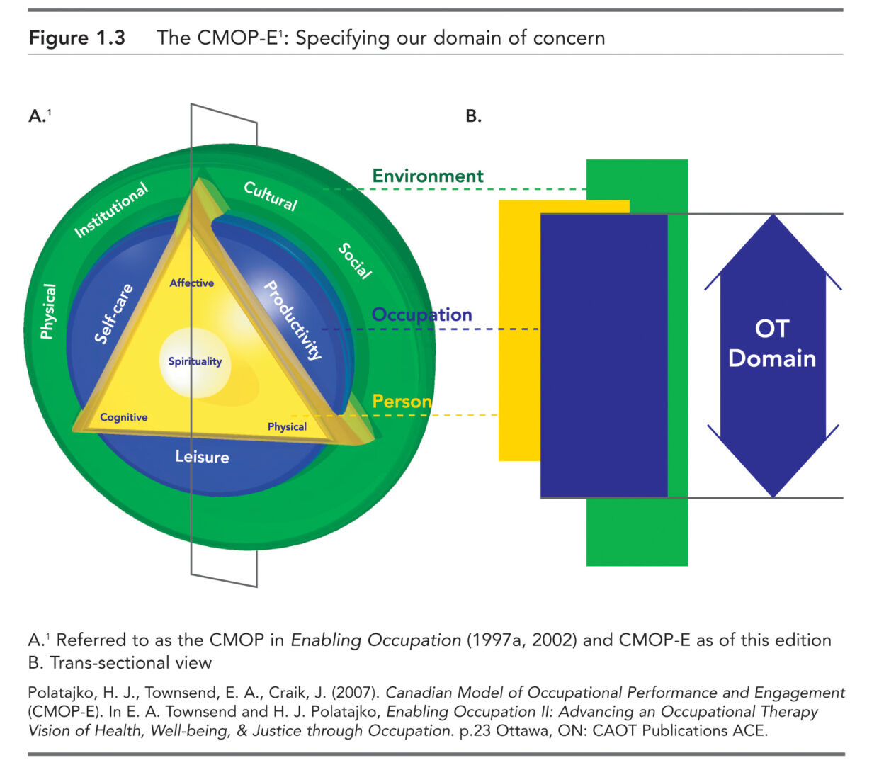 CMOP-E figure for website with permission CAOT