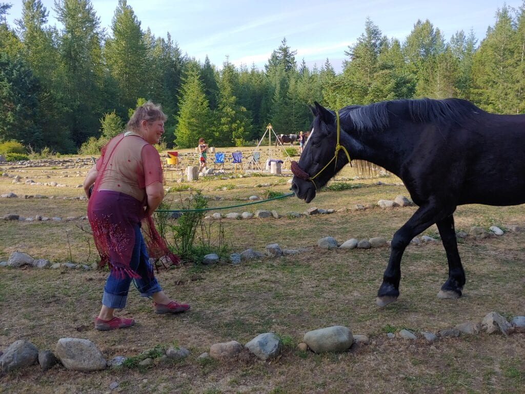 Hal and Spirit Butterfly Equine Labyrinth